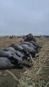 colorado goose hunting with Birds and Bucks Outdoors