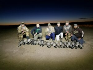 Field Duck Hunting in Colorado