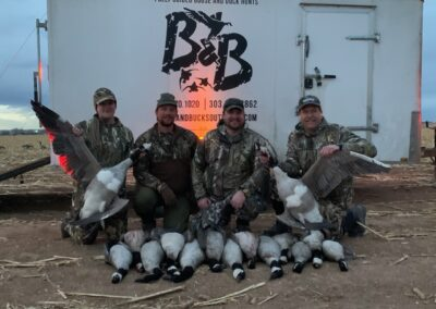 Quill Goose Hunting Colorado